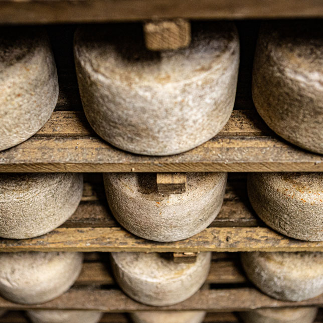 affinage-fromage-brebis-3